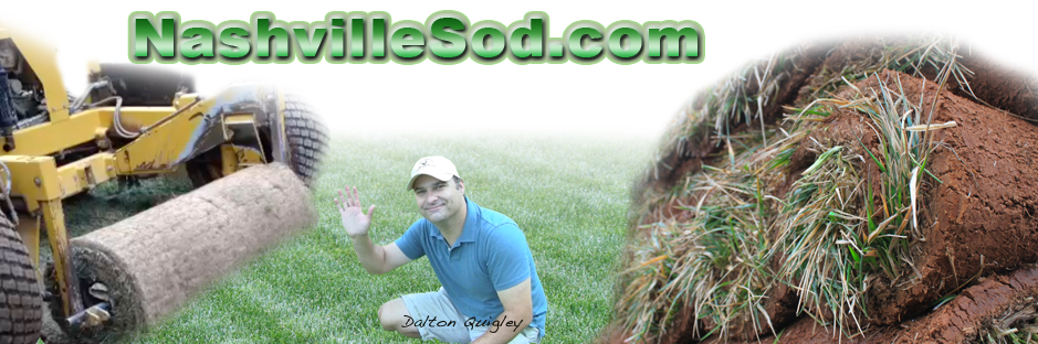 Sod Suppliers and Installers for Nashville Tennessee